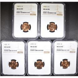5-NGC GRADED MS-66 RED LINCOLN CENTS