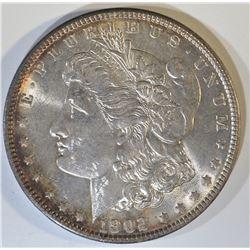 1902 MORGAN DOLLAR  GEM BU  NICE