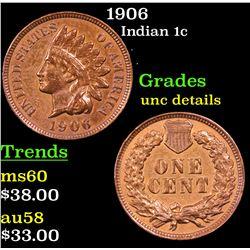 1906 Indian Cent 1c Grades Unc Details