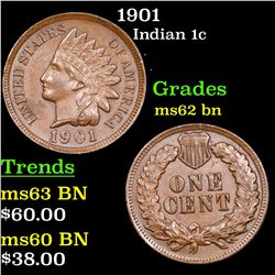 1901 Indian Cent 1c Grades Select Unc BN