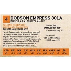 Dobson Empress 301a