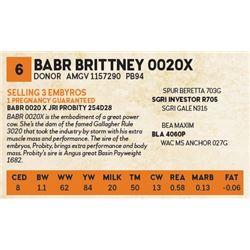 BABR BRITTNEY 0020X