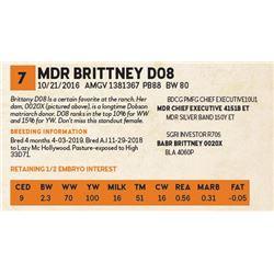 MDR BRITTNEY D08