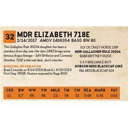MDR ELIZABETH 718E