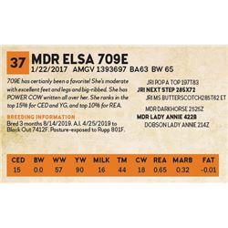 MDR ELSA 709E