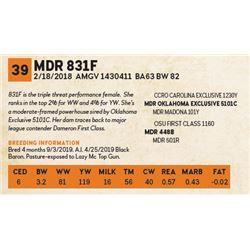 MDR 831F