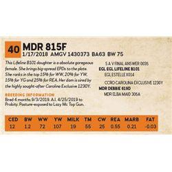 MDR 815F