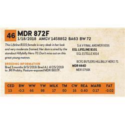 MDR 872F