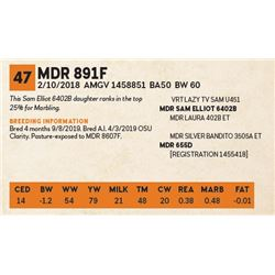 MDR 891F