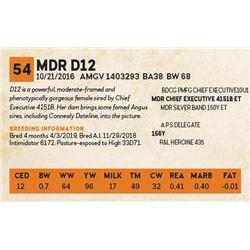 MDR D12