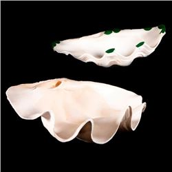 Two giant clam shells.