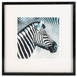 Three framed photographs of zebras.