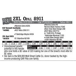 Lot - 2A - 2XL Opal 8911