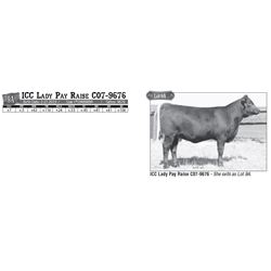 Lot - 9A - ICC Lady Pay Raise C07-9676