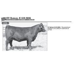 Lot - 10A - ICC Barbara K 610-9656