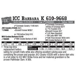 Lot - 10C - ICC Barbara K 610-9668