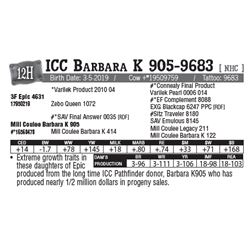 Lot - 12H - ICC Barbara K 905-9683 [ NHC ]