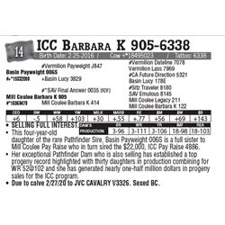 Lot - 14 - ICC Barbara K 905-6338