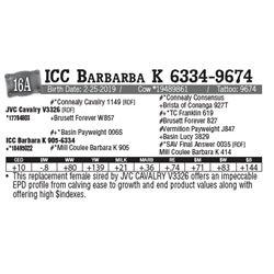 Lot - 16A - ICC Barbarba K 6334-9674
