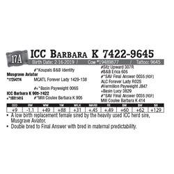 Lot - 17A - ICC Barbara K 7422-9645
