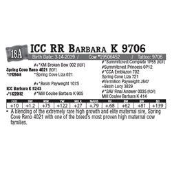 Lot - 18A - ICC RR Barbara K 9706
