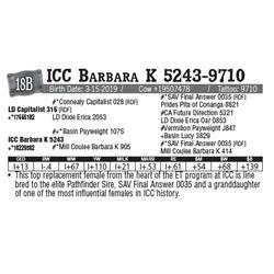 Lot - 18B - ICC Barbara K 5243-9710