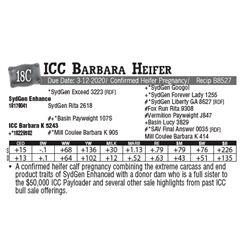 Lot - 18C - ICC Barbara Heifer