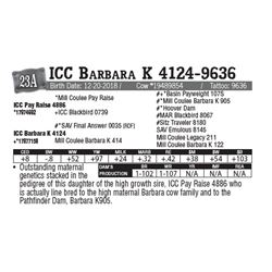 Lot - 23A - ICC Barbara K 4124-9636
