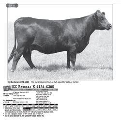 Lot - 24 - ICC Barbara K 4124-6305