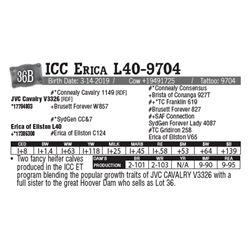 Lot - 36B - ICC Erica L40-9704