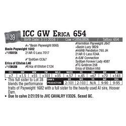 Lot - 39 - ICC GW Erica 654