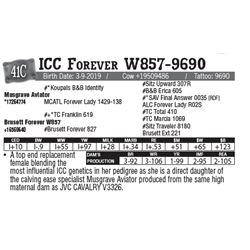 Lot - 41C - ICC Forever W857-9690
