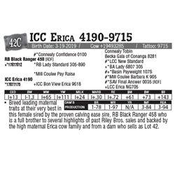Lot - 42C - ICC Erica 4190-9715