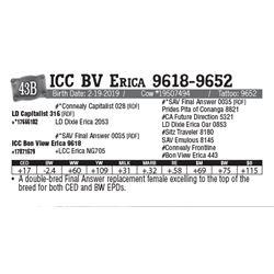 Lot - 43B - ICC BV Erica 9618-9652