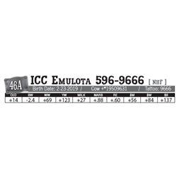 Lot - 46A - ICC Emulota 596-9666 [ NHF ]