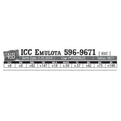 Lot - 46B - ICC Emulota 596-9671 [ NHC ]