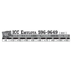 Lot - 46C - ICC Emulota 596-9649 [ NHC ]