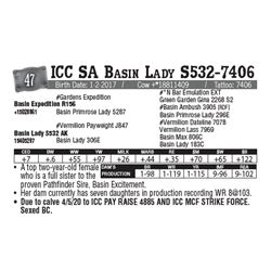 Lot - 47 - ICC SA Basin Lady S532-7406