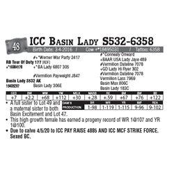 Lot - 48 - ICC Basin Lady S532-6358