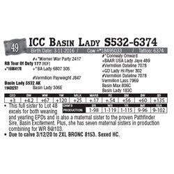 Lot - 49 - ICC Basin Lady S532-6374