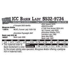 Lot - 51 - ICC Basin Lady S532-9734