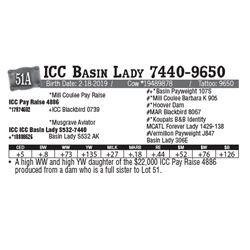 Lot - 51A - ICC Basin Lady 7440-9650