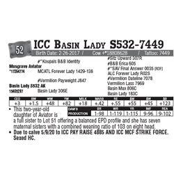 Lot - 52 - ICC Basin Lady S532-7449