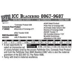 Lot - 54A - ICC Blackbird 8067-9687