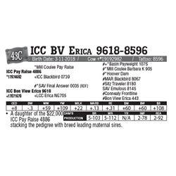 Lot - 43C - ICC BV Erica 9618-8596