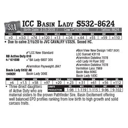 Lot - 53A - ICC Basin Lady S532-8624