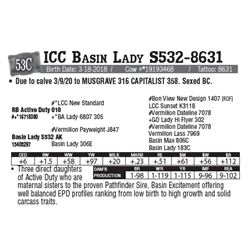 Lot - 53C - ICC Basin Lady S532-8631