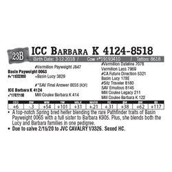 Lot - 23B - ICC Barbara K 4124-8518