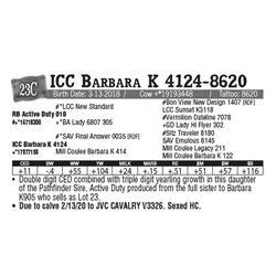 Lot - 23C - ICC Barbara K 4124-8620