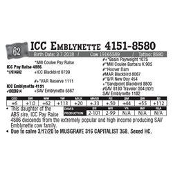 Lot - 62 - ICC Emblynette 4151-8580